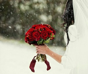 snow, wedding, and rose image