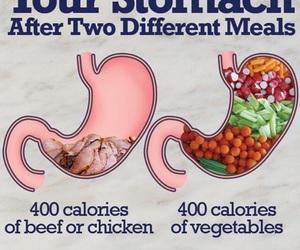 vegan and vegetables image