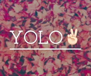 yolo image
