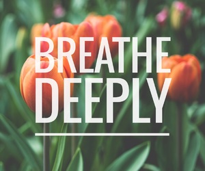 breathing, easel, and quotes image