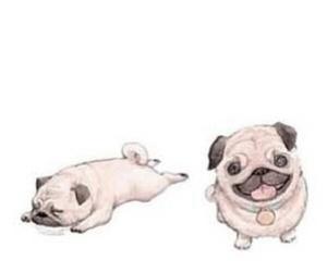 animals, dog, and drawings image