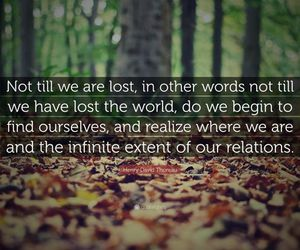 lost, quote, and thoreau image