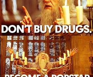 harry potter, drugs, and dumbledore image