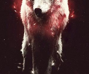 lovelyyyy and wolfyyyy image