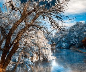 nature, landscape, and blue image