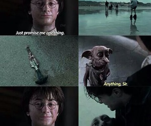 dobby, harry potter, and harry image