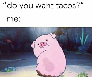 funny, tacos, and food image