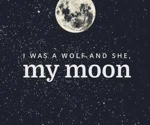 quote, wolf, and he and she image