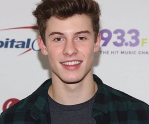 shawn mendes and love image