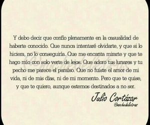 amor, destino, and julio cortazar image