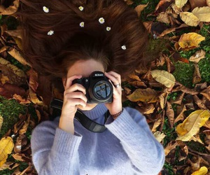 autumn, brown, and brown hair image