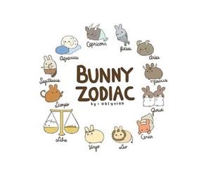 bunny, horoscope, and tumblr image