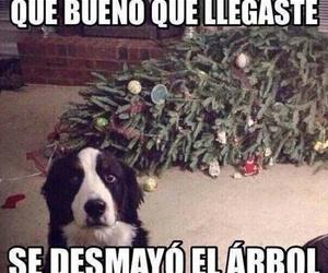 dog, christmas, and funny image