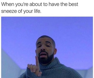 Drake, funny, and sneeze image