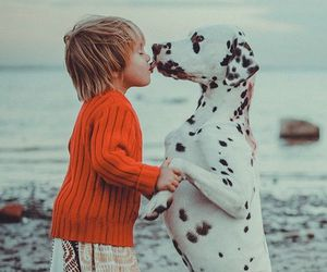 dog, child, and kids image