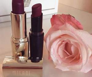 beauty, rose, and burgundy image