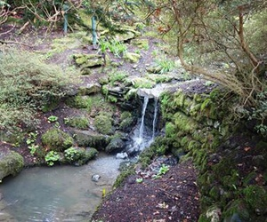 bodnant garden, wales, and waterfall image