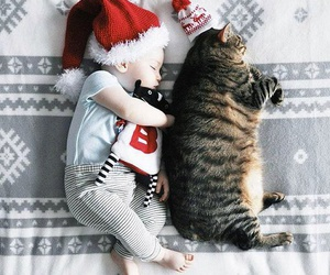 baby, cat, and christmas image