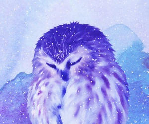 art, owl, and illustration image