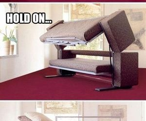 couch, bed, and funny image
