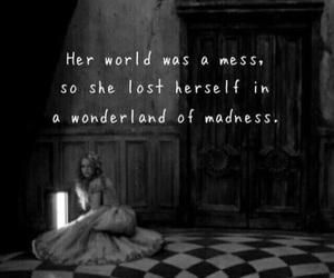 wonderland, madness, and alice image