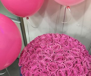 pink, rose, and balloons image