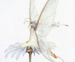 fairy and flower image