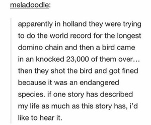 hilarious, holland, and me image