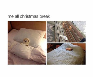funny, me, and christmas break image
