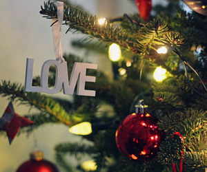 christmas, christmas tree, and love image
