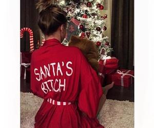 animal, christmas, and clothes image