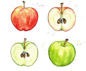 amy, apples, and market image