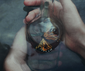 butterfly, hands, and water image