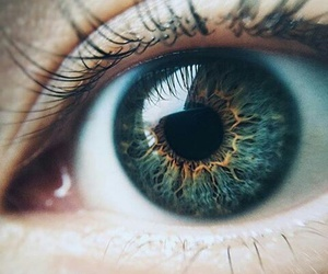 eyes, oeil, and waouh image