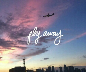 bored, tumblr, and fly away image