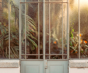 plants and door image