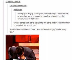 funny, gay marriage, and lol image