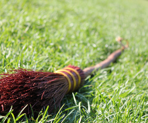 harry potter and quidditch image