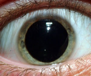 eye, eyes, and drugs image
