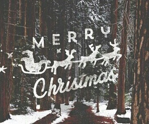 christmas, followers, and happy image