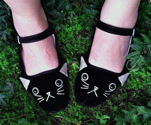 cats shoes image