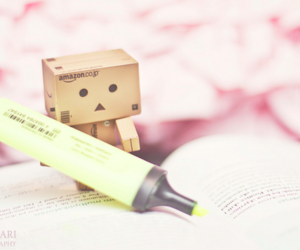 danbo, cute, and box image