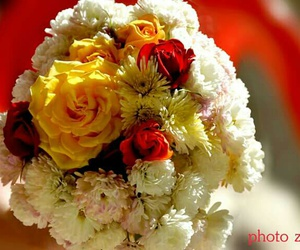 beautiful, beautiful image, and shero dear image