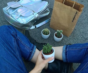 grunge, pale, and cactus image