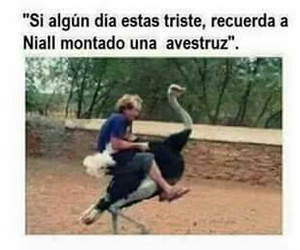 niall horan, one direction, and funny image