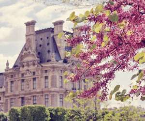 castle, flowers, and tree image