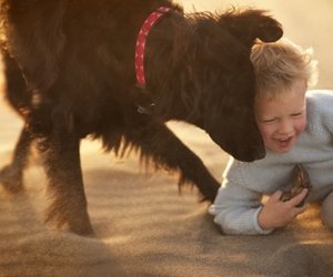 children, dog, and kid image