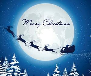 christmas, reindeer, and santa image