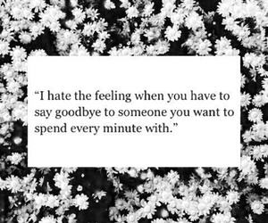 quotes, goodbye, and flowers image