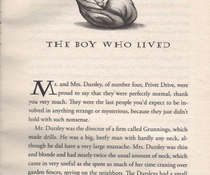 harry potter, book, and quotes image